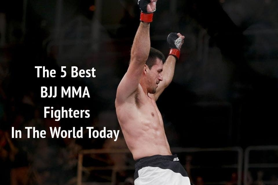 The 5 Best BJJ MMA Fighters In The World Today