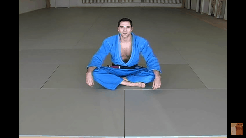 Brazilian Jiu Jitsu | Mount Escapes | Blue Belt Requirements |