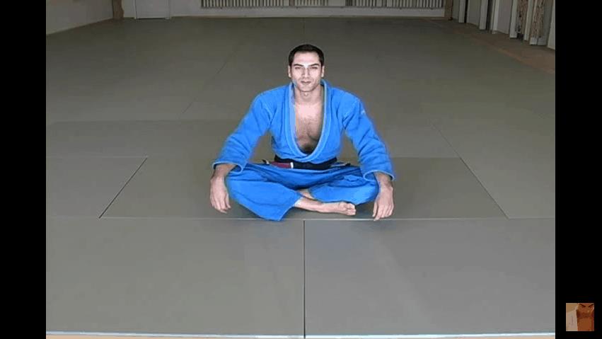 Brazilian Jiu Jitsu | Mount Escapes | Blue Belt Requirements |