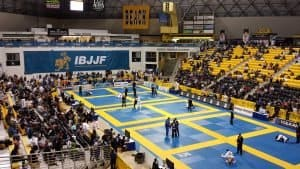 ibjjf competition from top