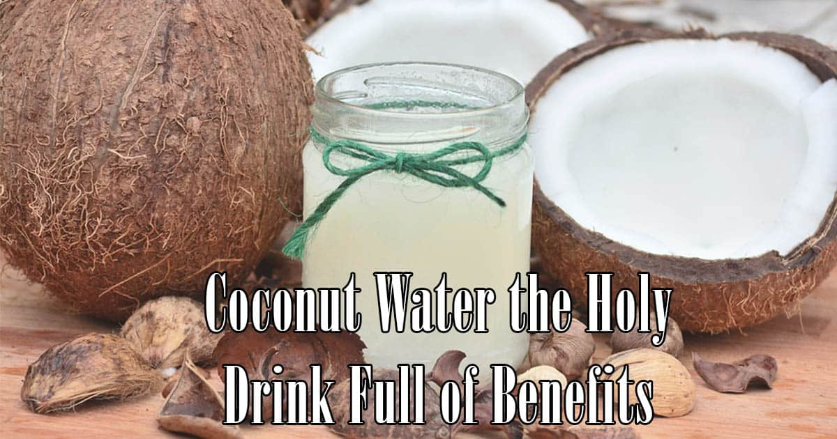 Coconut Water the Holy Drink Full of Benefits