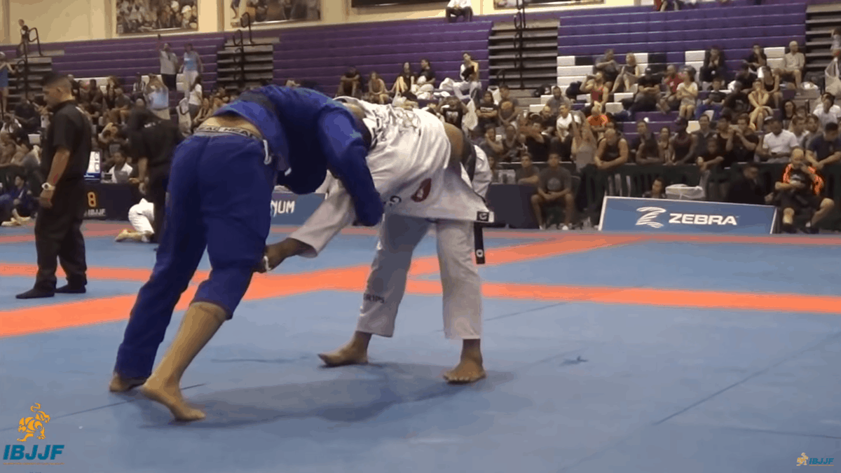 Max Gimenis vs Mahamed Aly / New York BJJ Pro 2018