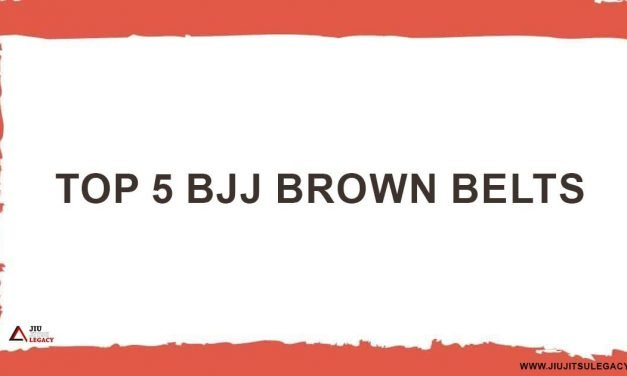 Top BJJ Brown Belts