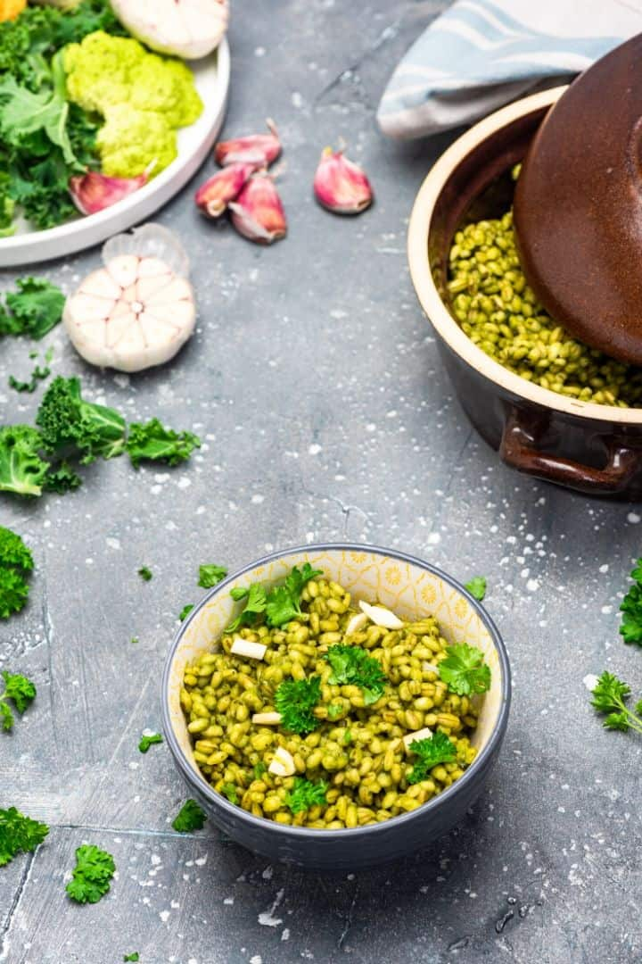 Plant-based food challenge | Jiu Jitsu Legacy