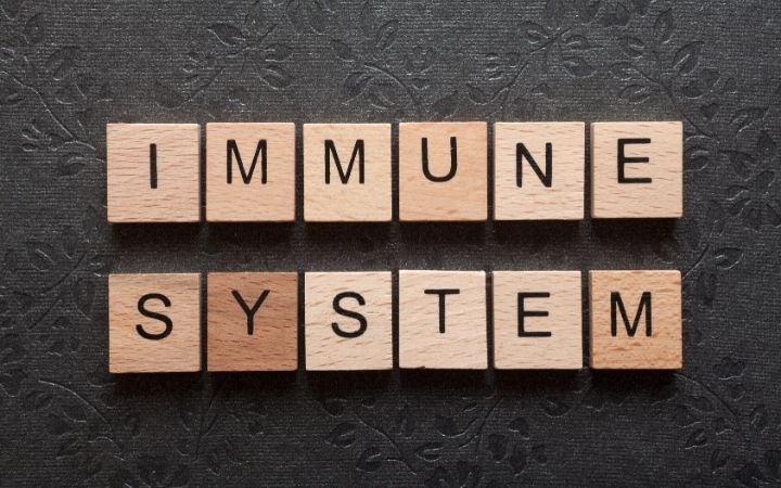 How to boost your immune system | Jiu Jitsu Legacy